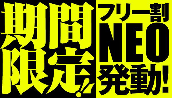 期間限定!フリー割 NEO 発動!_600